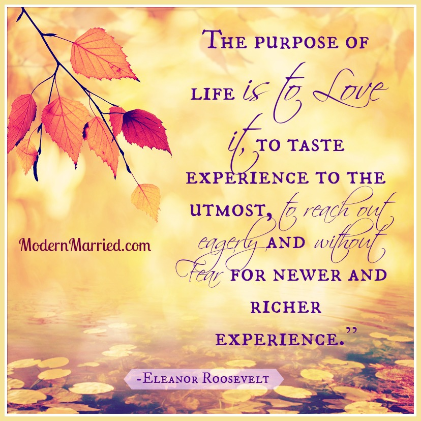 thanksgiving, gratitude, the purpose of life is to love it.